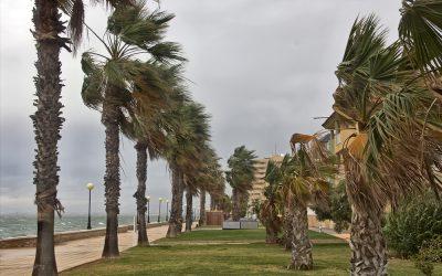 Preparing Your Solar Panels For Hurricane Season in Florida