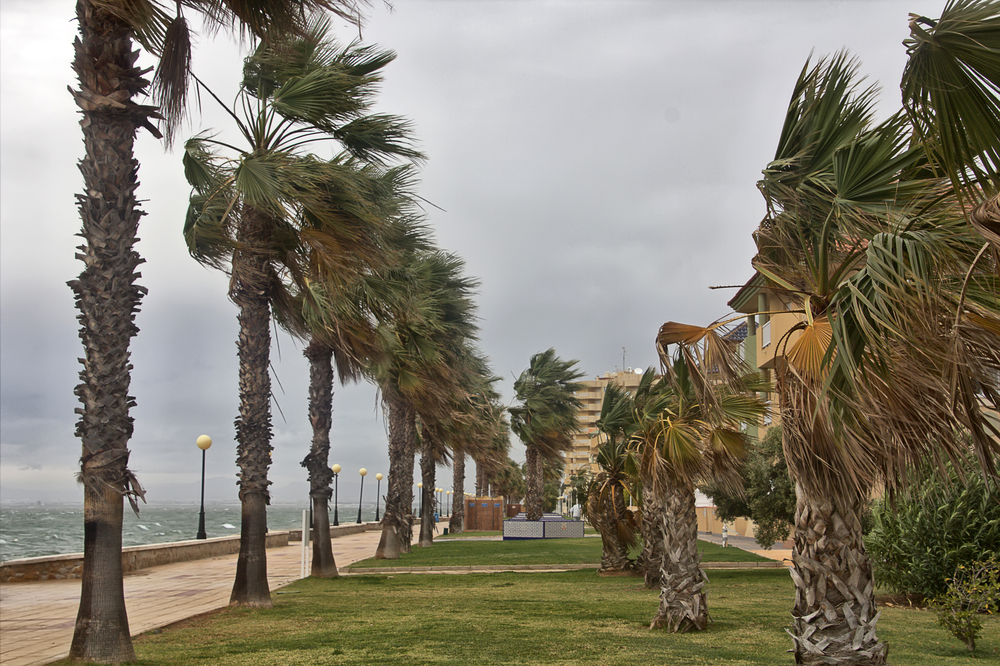 Preparing Your Solar Panels For Hurricane Season